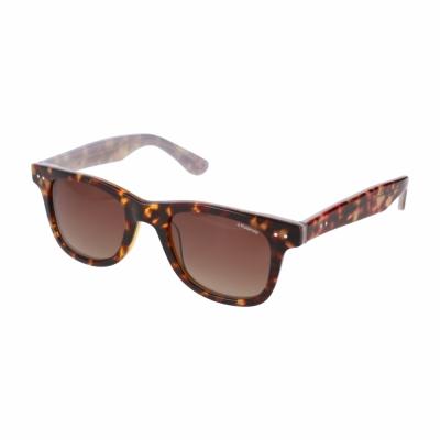 Ochelari de soare Polaroid X8400 Maro